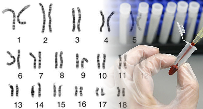 Prenatal DNA Test Accurately Detects Fetal Disorders