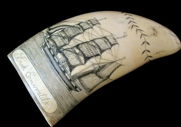 Art of a sailor scrimshaw