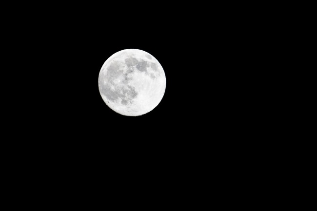 Moon Based Werewolf Diet Can Shed Six Pounds in One Day