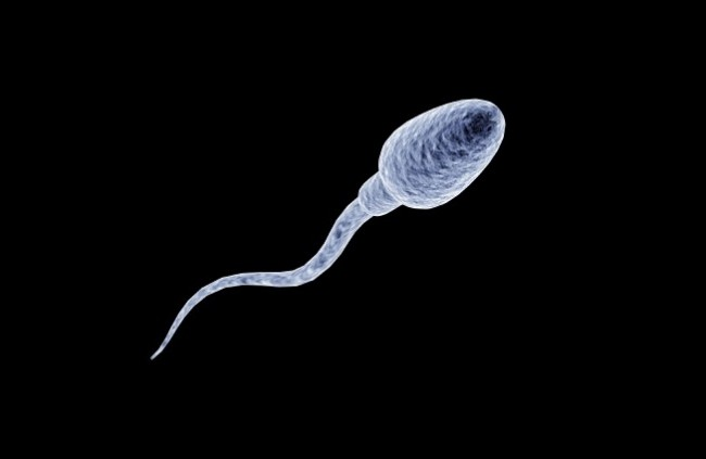 sperm age risks and benefits