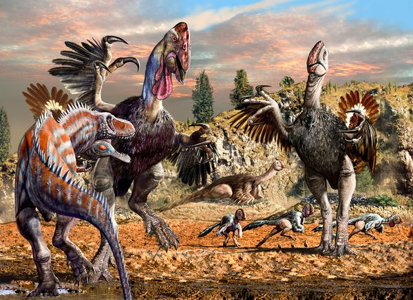 Classic Dinosaurs Debunked With New Chicken From Hell