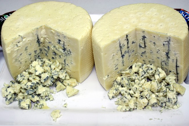 Cheese, Blue Cheese, Fungus, Fungal Sex