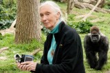 Jane Goodall and the Courage of Her Convictions