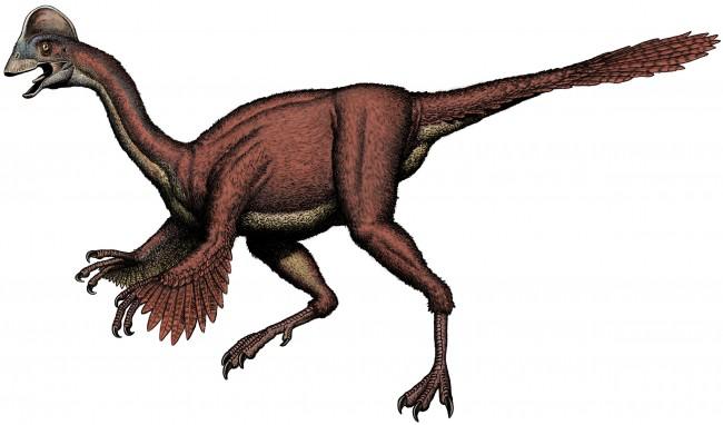 Strange Birdlike Type of Dinosaur Discovered Called Chicken From Hell