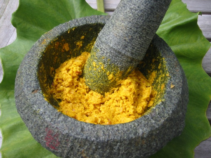 Turmeric Can Replace Statin Drugs and Treat Cardiovascular Disease