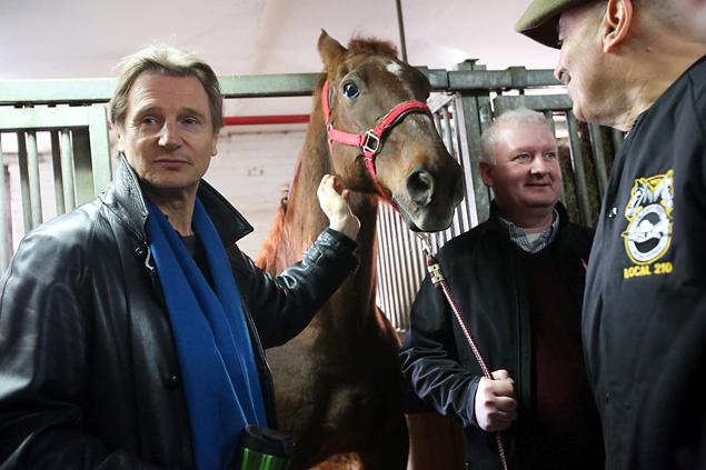 Liam Neeson Fights to Preserve Carriage Horse Tradition in NYC