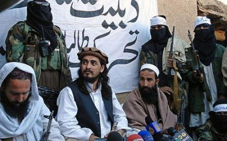 Taliban Asks for Ceasefire