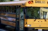 Florida Bus Driver Controversy
