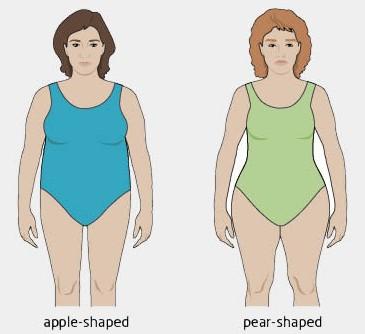 body shape index, body mass index, obesity