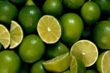 Lime Shortage Linked to Mexican Drug Cartel
