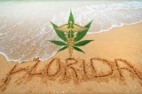 Medical Cannabis Gaining Support in Florida