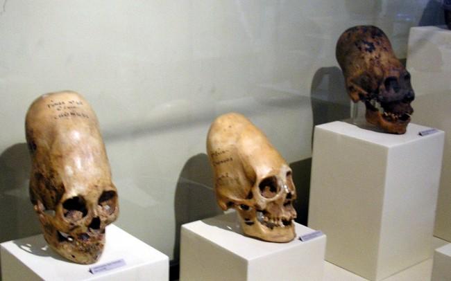 Paracas Elongated Skulls New DNA Tests Reveal Shocking Information
