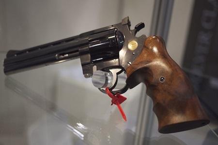 Philadelphia Toddler Accidentally Kills Sister With Loaded Gun
