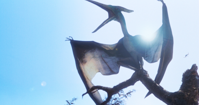 Pterosaur Fossil Discovered: