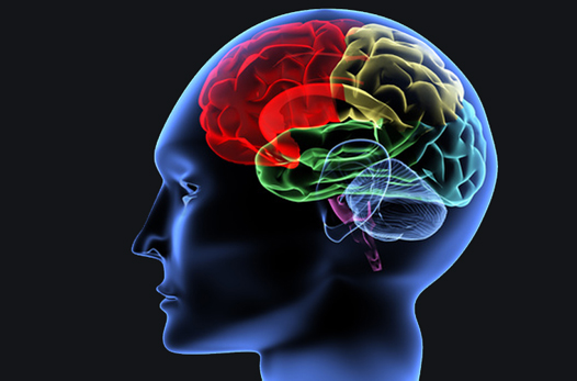 Traumatic Brain Injury Could Result in Homelessness?