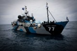 Whaling in Japan Prohibited: Great Victory for Sea Shepherd