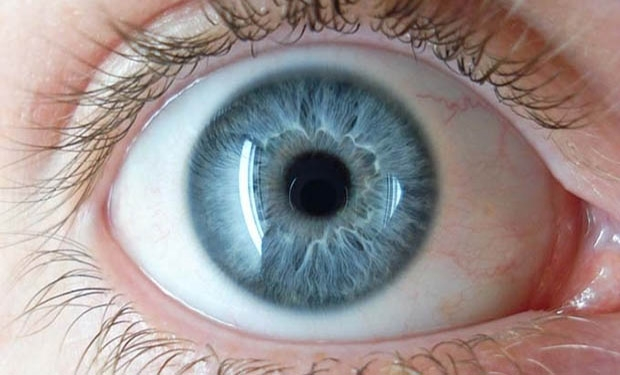 Where Do Blue Eyes Come From?