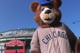 Chicago 'Billy Cub' Punches Provoking Patron