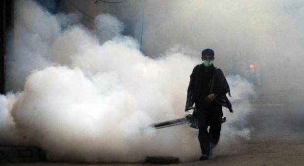 Dengue Fever Epidemic Risk - Guardian Liberty Voice