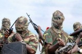Boko Haram Abducts Girls En Masse in Nigeria