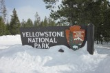 More Earthquakes Could Rock Yellowstone in April [Video]