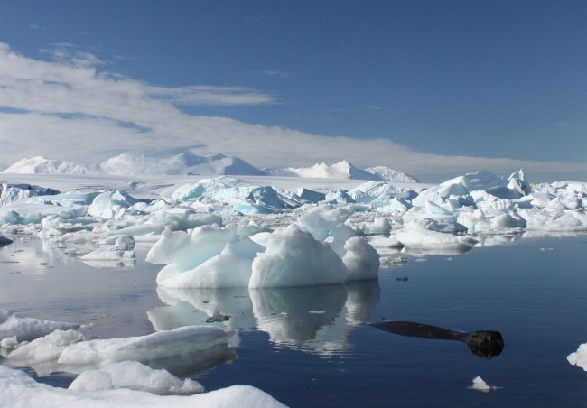 Antarctica Glaciers Melting Faster Than Once Believed