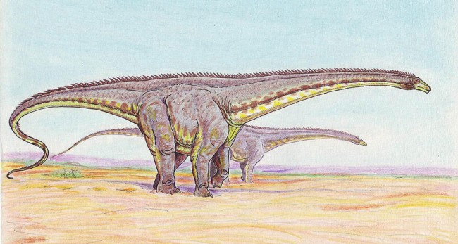 Diplodocids One Roamed Argentina and Survived the Mass Extinction