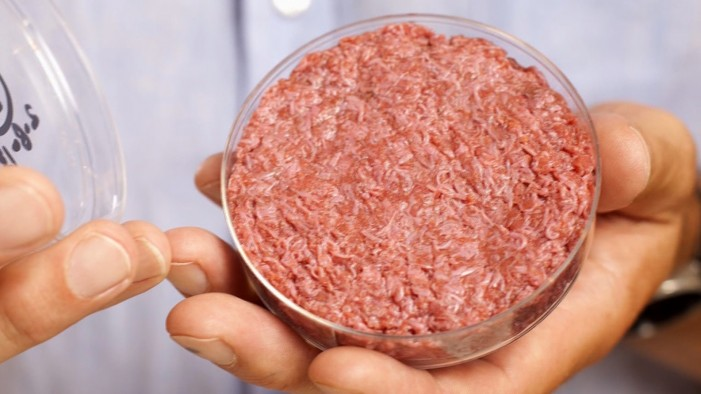 Is Synthetic Meat Grown From Stem Cells Appetizing?