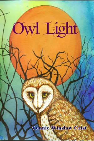Owl Light by Vonnie Winslow Crist (Book Review)