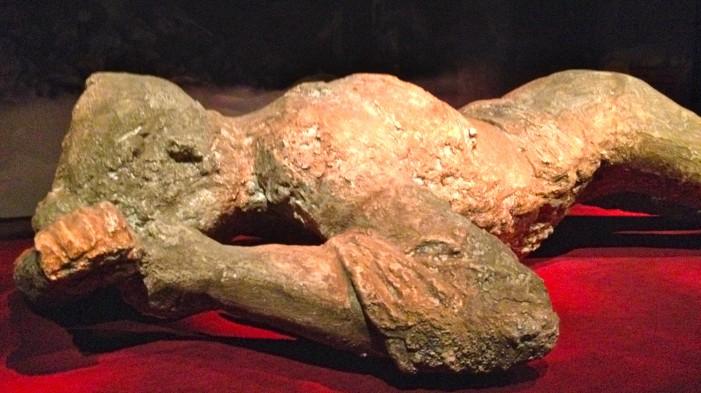Pompeii Exhibit Brings City to Life Then Death