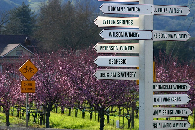 Sonoma County Wineries Have Something for Everyone