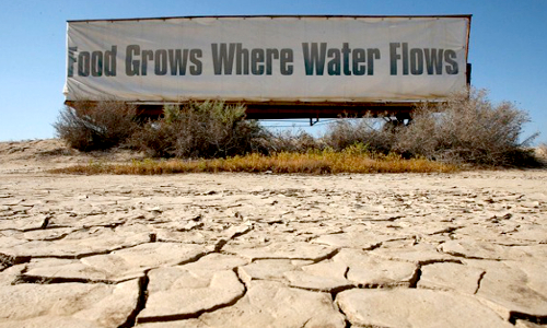 California Drought Taking Its Toll Even as El Nino is Expected