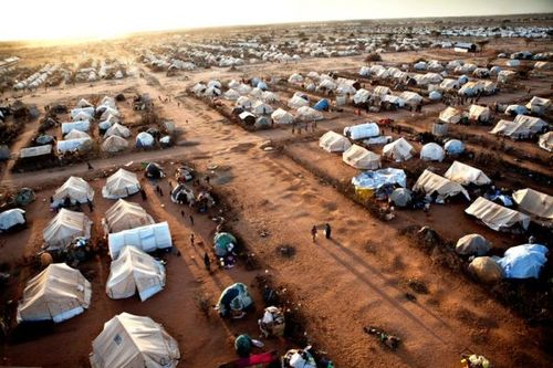 Refugees: Thousands Left Displaced by Heavy-Handed Kenyan Policies