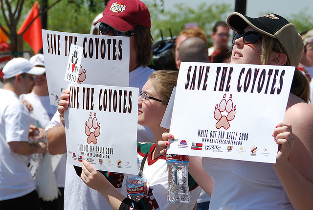 The Arizona Coyotes Are Here to Stay…Seriously – Desert Dog Times