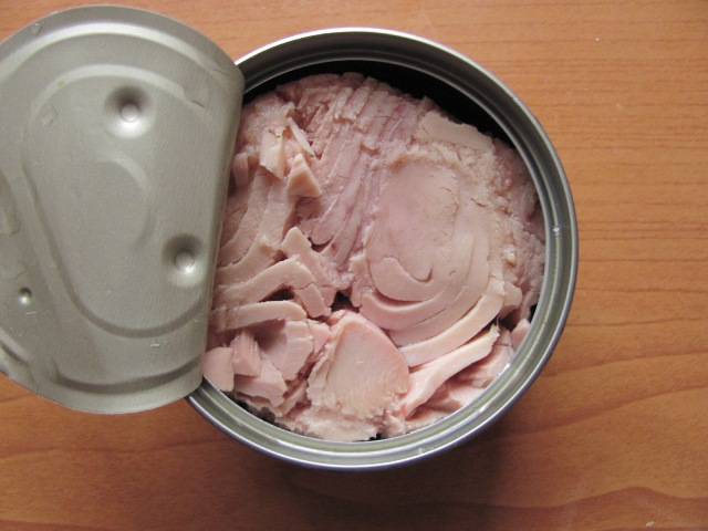 Consumer reports says pregnant women should not eat tuna for Fish not to eat when pregnant