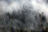 Research Changes View on Brown Carbon Effects