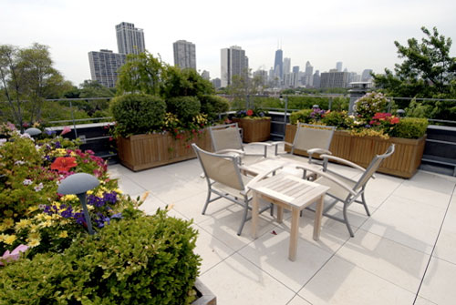 Rooftop Gardens Good for Body Soul and Wallet