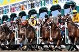 Horse Races Continue at Del Mar Despite Deaths [Graphic Video]
