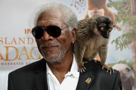 Island of Lemurs: Madagascar Morgan Freeman Adds Gravitas to Documentary Short