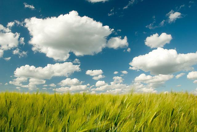 Cloud Security Still Ephemeral