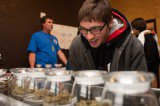 Marijuana: Welfare Pays for Weed in Colorado and Washington