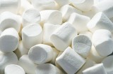 Marshmallows Can Teach People About Success in Life Says Book