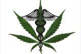 Medical Marijuana: Free Weed Mandates