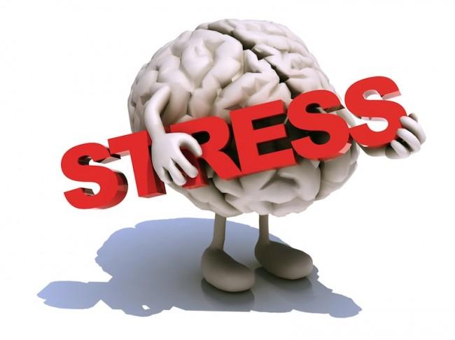 Stress Mental Health Mental Illness Health News
