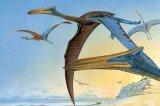 Pterosaur Named After 'Avatar' Dragon