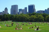 New York City's Green Spaces