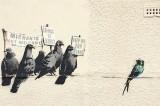 Banksy Accused of Being Racist