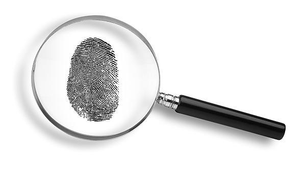 Maggots Can Unlock Clues to Deadly Crimes