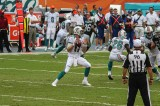 Miami Dolphins Force Another Bears Loss in Chicago [Recap]