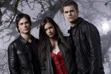Will Damon Accept Elena's Decision in The Vampire Diaries?